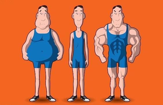 Тренировки по типу телосложения