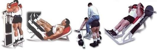 Виды упражнений для икр