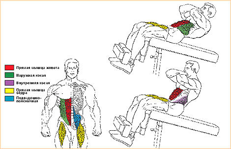 Подъёмы на римском стуле