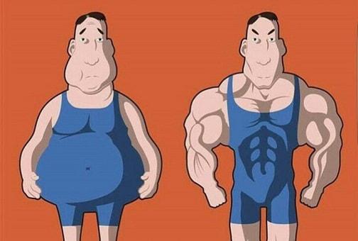 Почему вы не можете прибавить в мышечной массе или похудеть