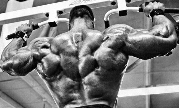 Лучшие упражнения для мышц спины (вертикальная тяга)