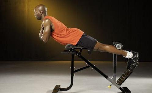 Самые лучшие упражнения для проработки поясничных мышц