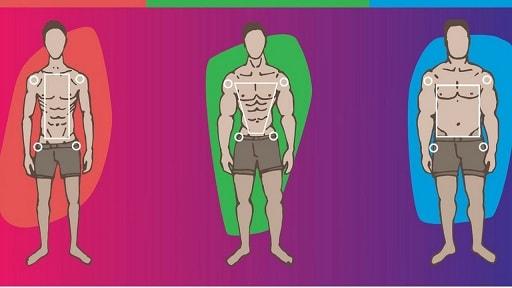 Программы по типу телосложения