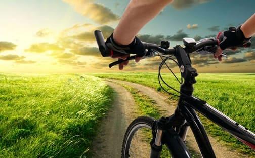 Велопрогулка это лучшее кардио