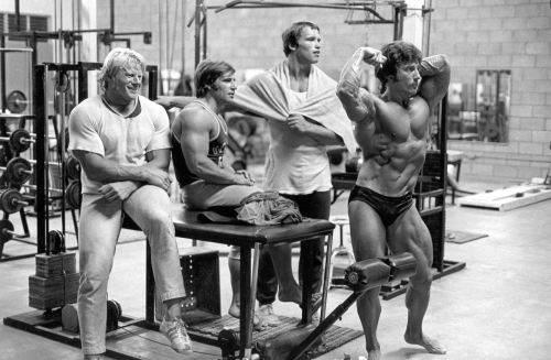 Одна группа мышц за одну тренировку